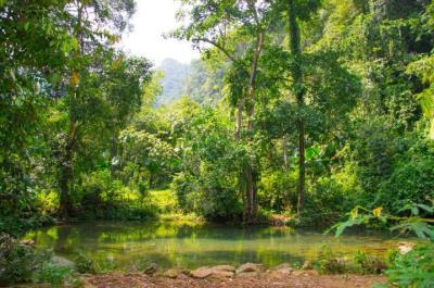 Kinh nghiệm vườn quốc gia Xuân Sơn