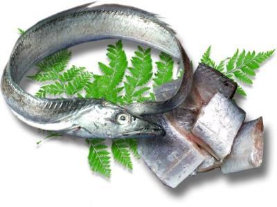 Cá hố là cá gì và cá hố có giàu dinh dưỡng không
