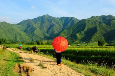 Những buổi chiều rực rỡ trên bản Thái