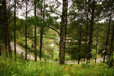 Những cung đèo nguy hiểm ở Lâm Đồng