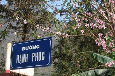 Huyền thoại con đường Hạnh Phúc - Hà Giang.
