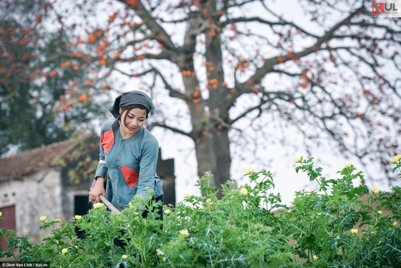 Tháng Ba, hoa gạo Bắc Giang đẹp đến nao lòng thiếu nữ