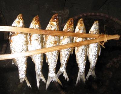 [NATV] Cá Dầu Nướng || Hồ Ba Bể - Bắc Cạn || (13/02/2015)
