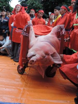 Đừng để nghi thức chém lợn ảnh hưởng hình ảnh Việt Nam