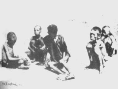 Tại sao gọi dân Thái Bình là dân tay bị tay gậy