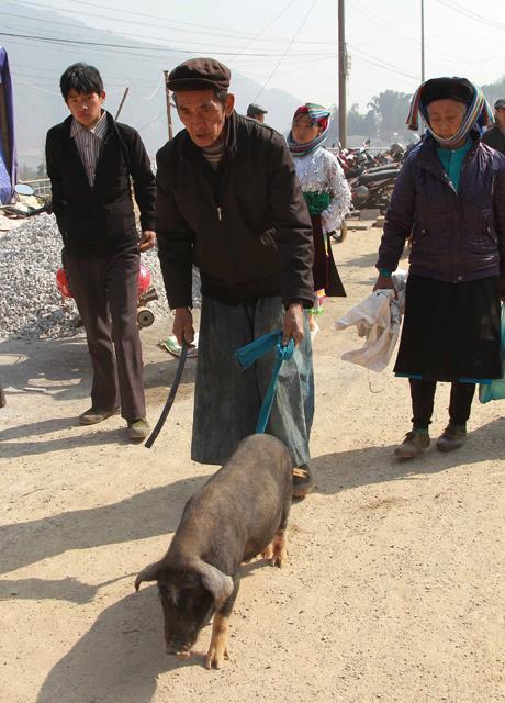 Phiên chợ Tết vùng cao nguyên đá Hà Giang