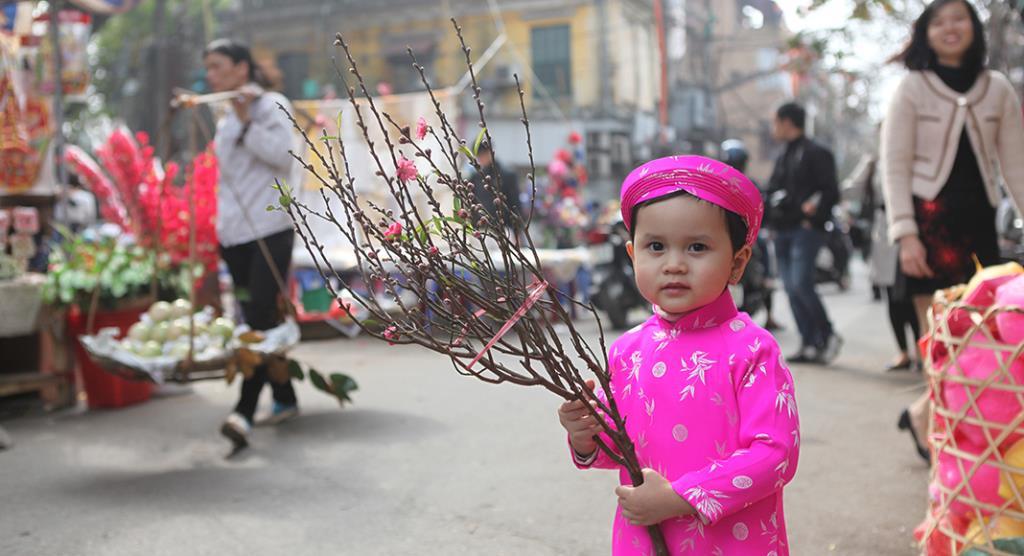 Chợ hoa Tết Hàng Lược một điểm văn hóa không thể thiếu của Hà Nội